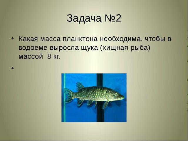 Задача №2 Какая масса планктона необходима, чтобы в водоеме выросла щука (хищ...