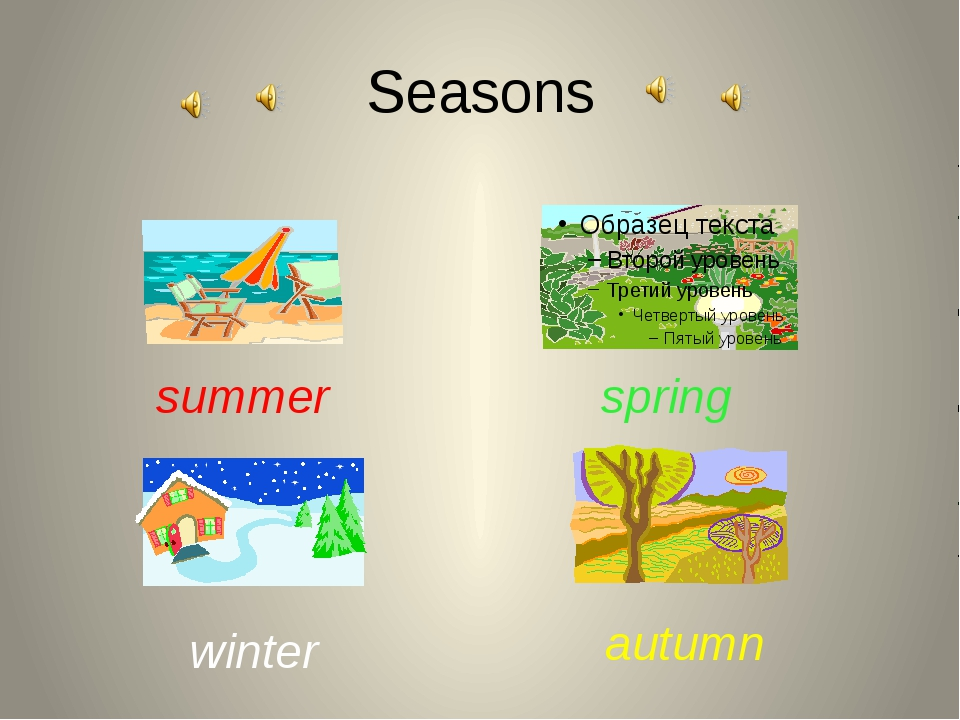 Seasons summer autumn winter spring
