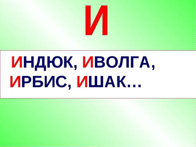 ИНДЮК, ИВОЛГА, ИРБИС, ИШАК…