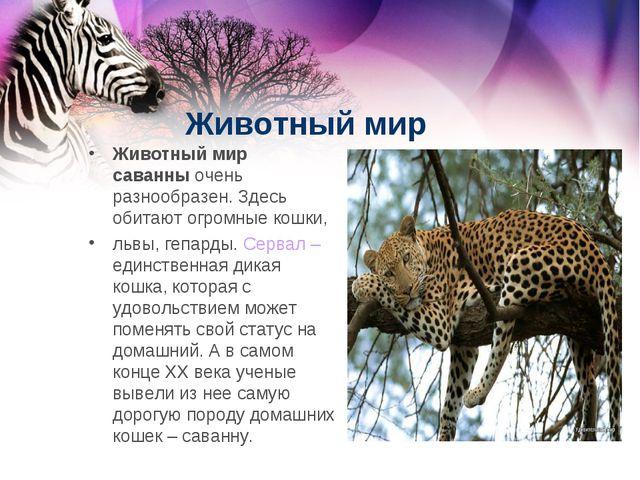Животный мир Животный мир саванныочень разнообразен. Здесь обитают огромные...