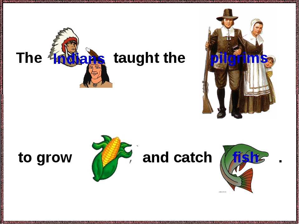 The to grow and catch . pilgrims taught the Indians fish corn