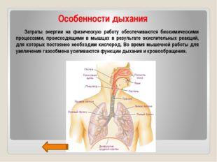 Особенности дыхания Затраты энергии на физическую работу обеспечиваются биох