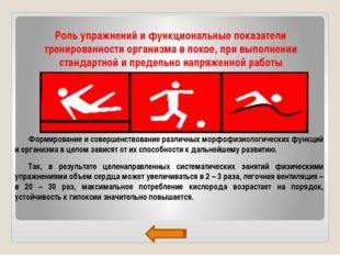 Роль упражнений и функциональные показатели тренированности организма в покое