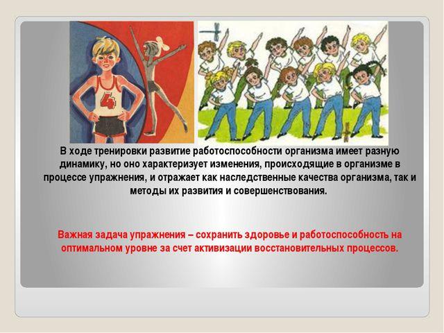 В ходе тренировки развитие работоспособности организма имеет разную динамику...