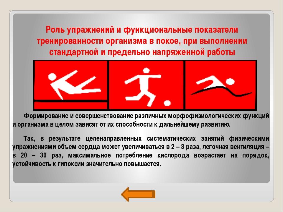 Роль упражнений и функциональные показатели тренированности организма в покое...