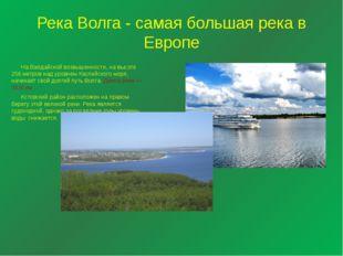 Река Волга - самая большая река в Европе  На Валдайской возвышенности, на вы