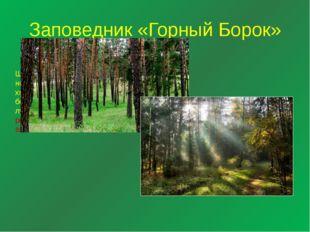 Заповедник «Горный Борок» Территория «Горный Борок»- Шавская горка - с. Кадн