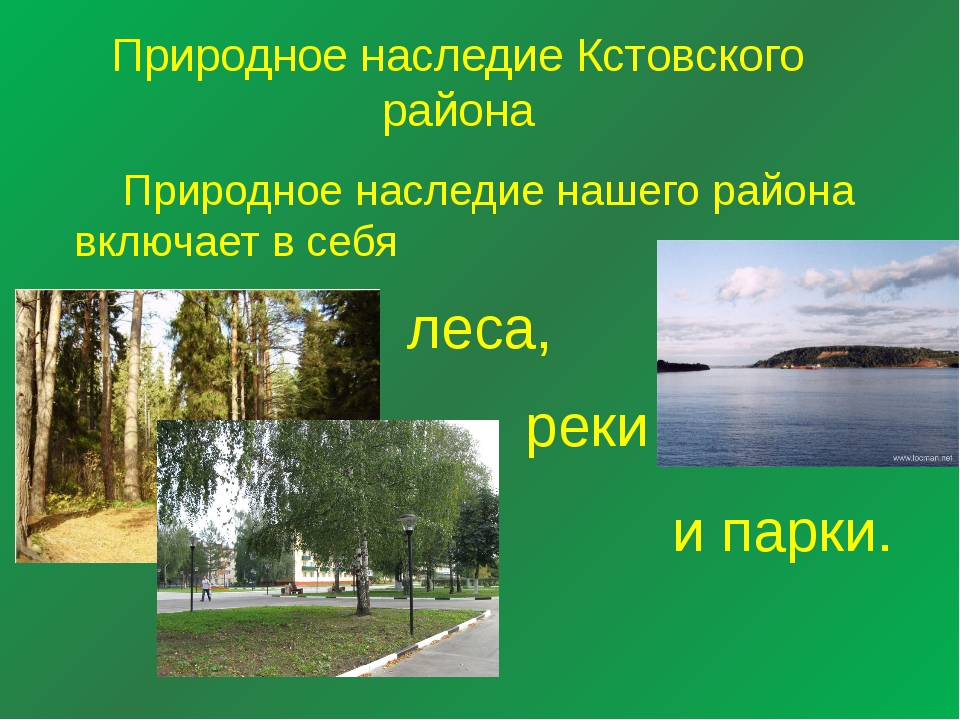 Природное наследие Кстовского района Природное наследие нашего района включа...
