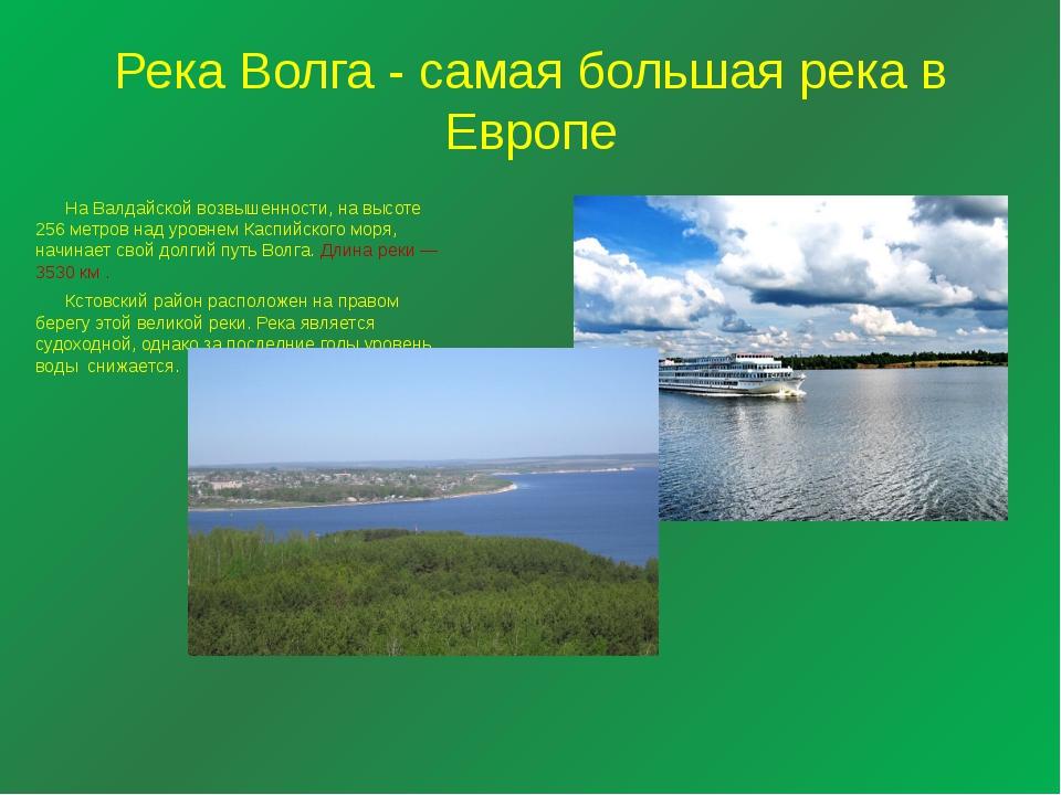 Река Волга - самая большая река в Европе  На Валдайской возвышенности, на вы...