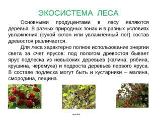 Основными продуцентами в лесу являются деревья. В разных природных зонах и в