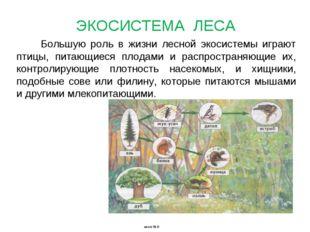 Большую роль в жизни лесной экосистемы играют птицы, питающиеся плодами и рас