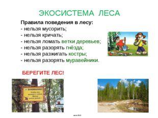 Правила поведения в лесу: - нельзя мусорить; - нельзя кричать; - нельзя ломат