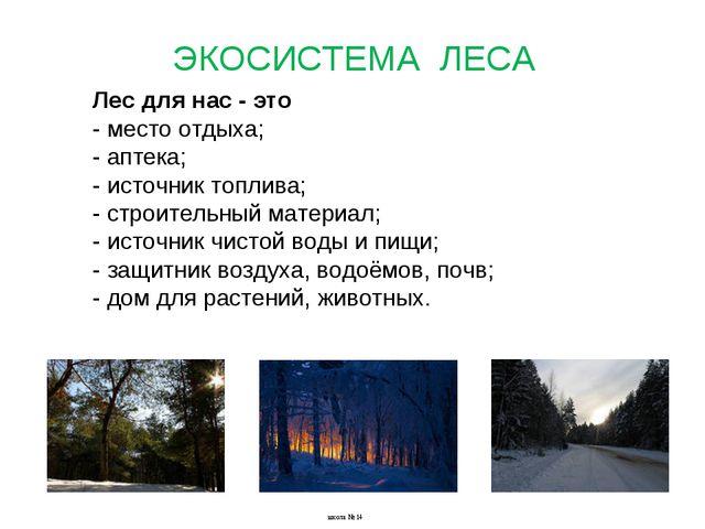 Лес для нас - это - место отдыха; - аптека; - источник топлива; - строительны...