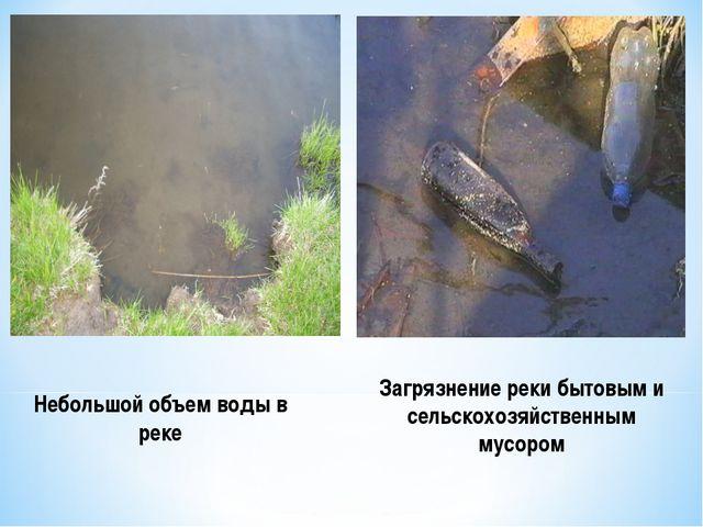 Небольшой объем воды в реке Загрязнение реки бытовым и сельскохозяйственным м...