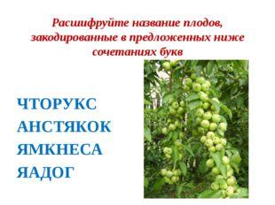 Расшифруйте название плодов, закодированные в предложенных ниже сочетаниях бу