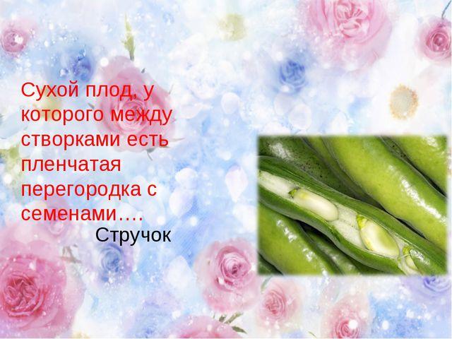 Сухой плод, у которого между створками есть пленчатая перегородка с семенами…...