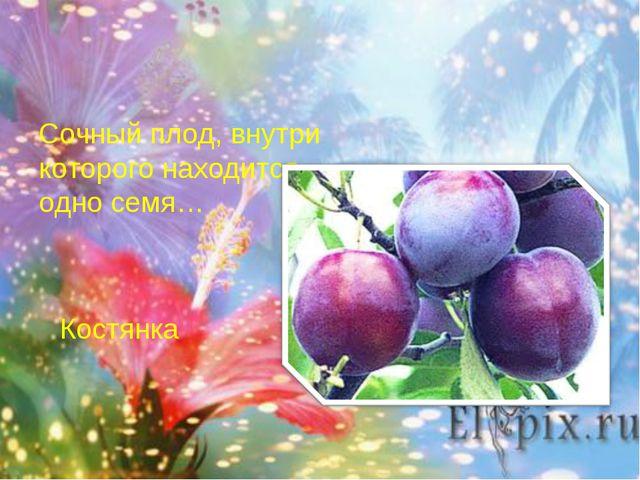 Сочный плод, внутри которого находится одно семя… Костянка