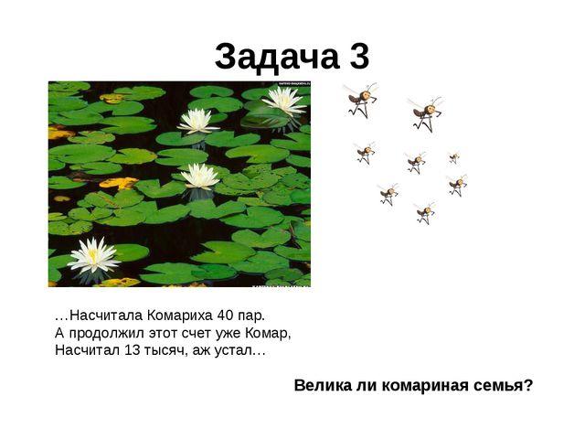 Задача 3 …Насчитала Комариха 40 пар. А продолжил этот счет уже Комар, Насчита...
