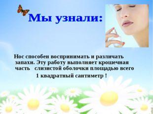 Нос способен воспринимать и различать запахи. Эту работу выполняет крошечная