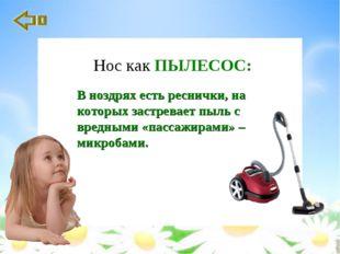 В ноздрях есть реснички, на которых застревает пыль с вредными «пассажирами»