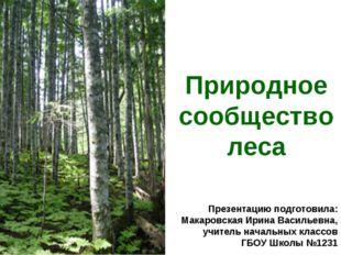 Природное сообщество леса Презентацию подготовила: Макаровская Ирина Васильев