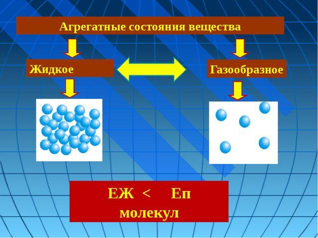 Жидкое Газообразное Агрегатные состояния вещества ЕЖ < Еп молекул