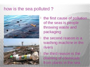 how is the sea polluted ? the first cause of pollution of the seas is people