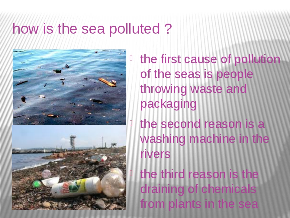 how is the sea polluted ? the first cause of pollution of the seas is people...