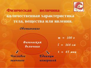 m = 100 г l = 164 см t = 45 мин Обозначение Числовое значение Единицы измерен