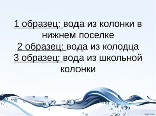 1 образец: вода из колонки в нижнем поселке 2 образец: вода из колодца 3 обра