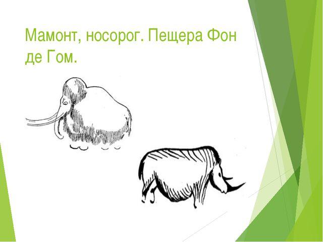 Мамонт, носорог. Пещера Фон де Гом.