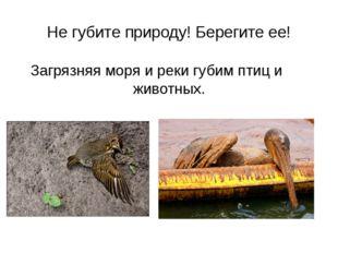 Не губите природу! Берегите ее! Загрязняя моря и реки губим птиц и животных.