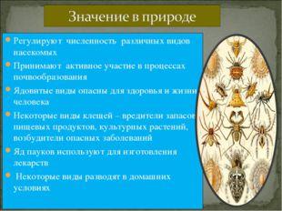Регулируют численность различных видов насекомых Принимают активное участие в