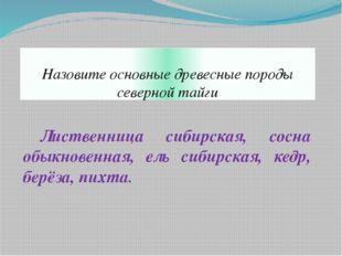 Назовите основные древесные породы северной тайги Лиственница сибирская, сос