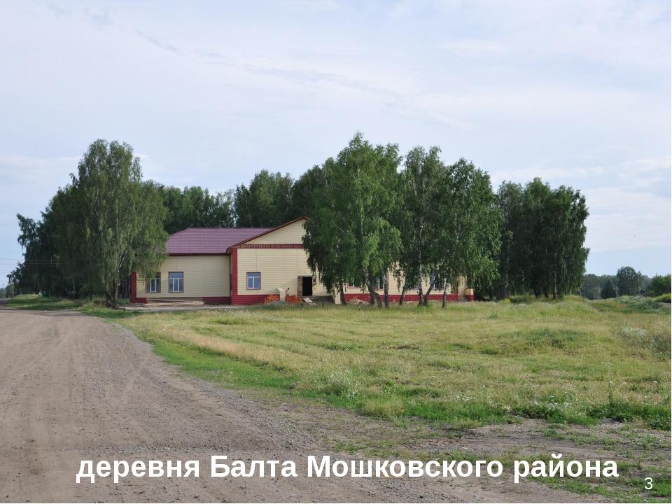 3 деревня Балта Мошковского района