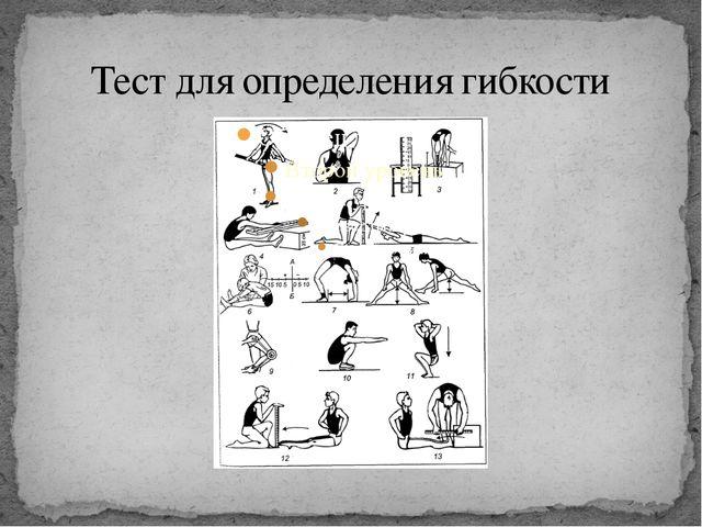 Тест для определения гибкости