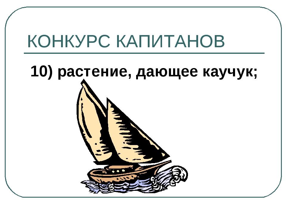 КОНКУРС КАПИТАНОВ 10) растение, дающее каучук;