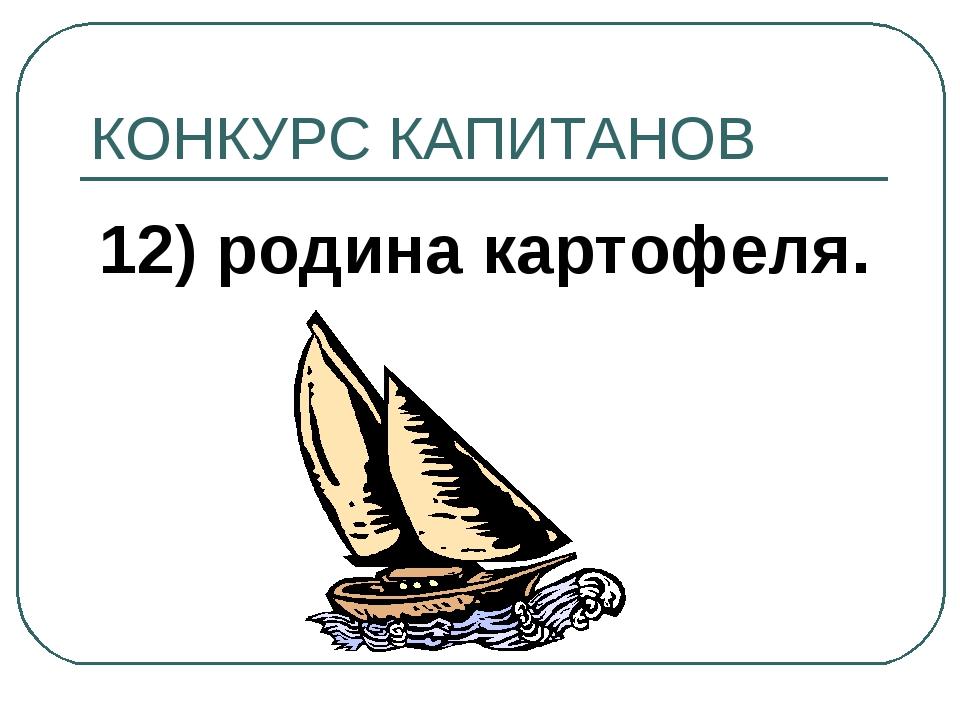 КОНКУРС КАПИТАНОВ 12) родина картофеля.
