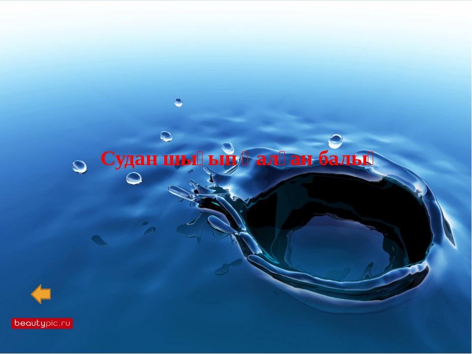Әлемдегі ең ір құс- Әлемдегі ең қауіпті саңырауқұлақ- Әлемдегі ең тез өсетін...