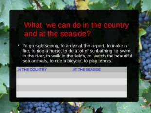What we can do in the country and at the seaside? To go sightseeing, to arriv