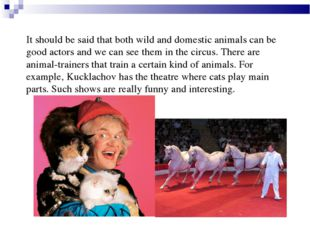 It should be said that both wild and domestic animals can be good actors and
