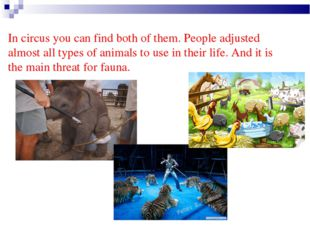 In circus you can find both of them. People adjusted almost all types of anim