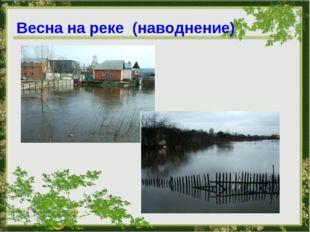 Весна на реке (наводнение)