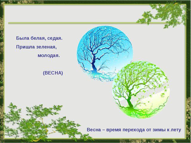 Была белая, седая. Пришла зеленая, молодая. (ВЕСНА) Весна – время перехода от...