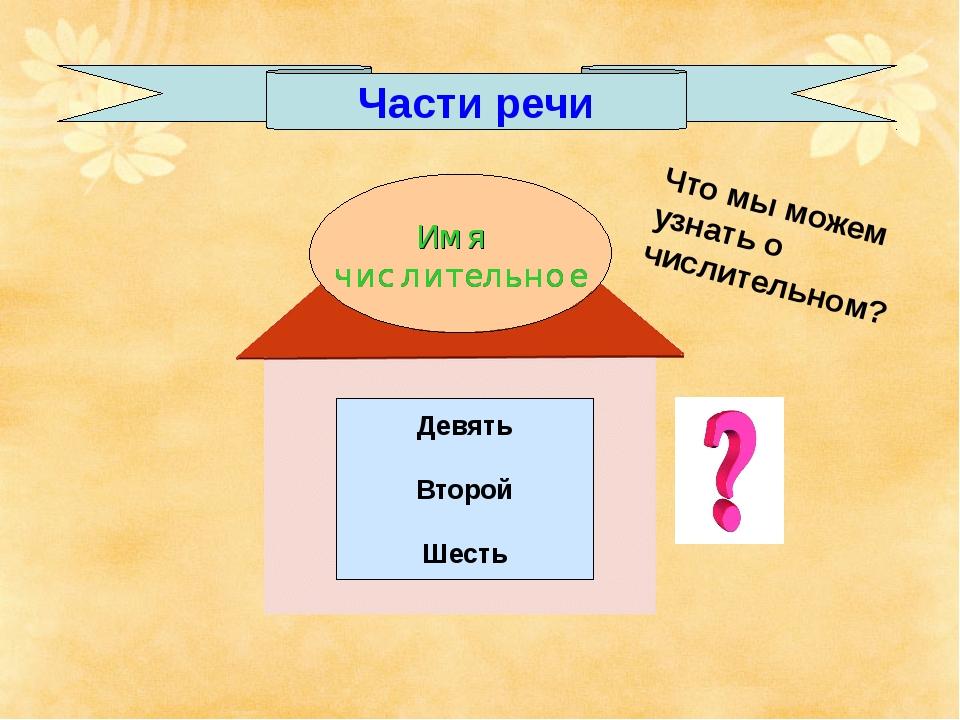 Части речи Девять Второй Шесть Что мы можем узнать о числительном?
