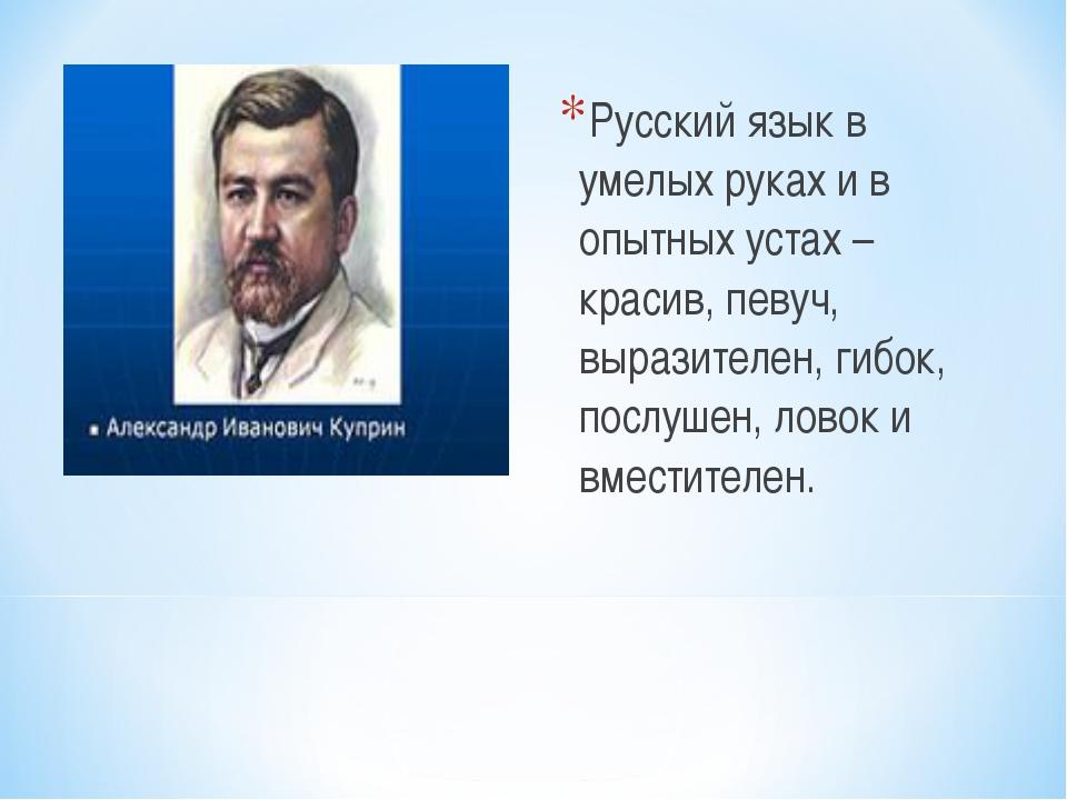 Русский язык в умелых руках и в опытных устах – красив, певуч, выразителен, г...