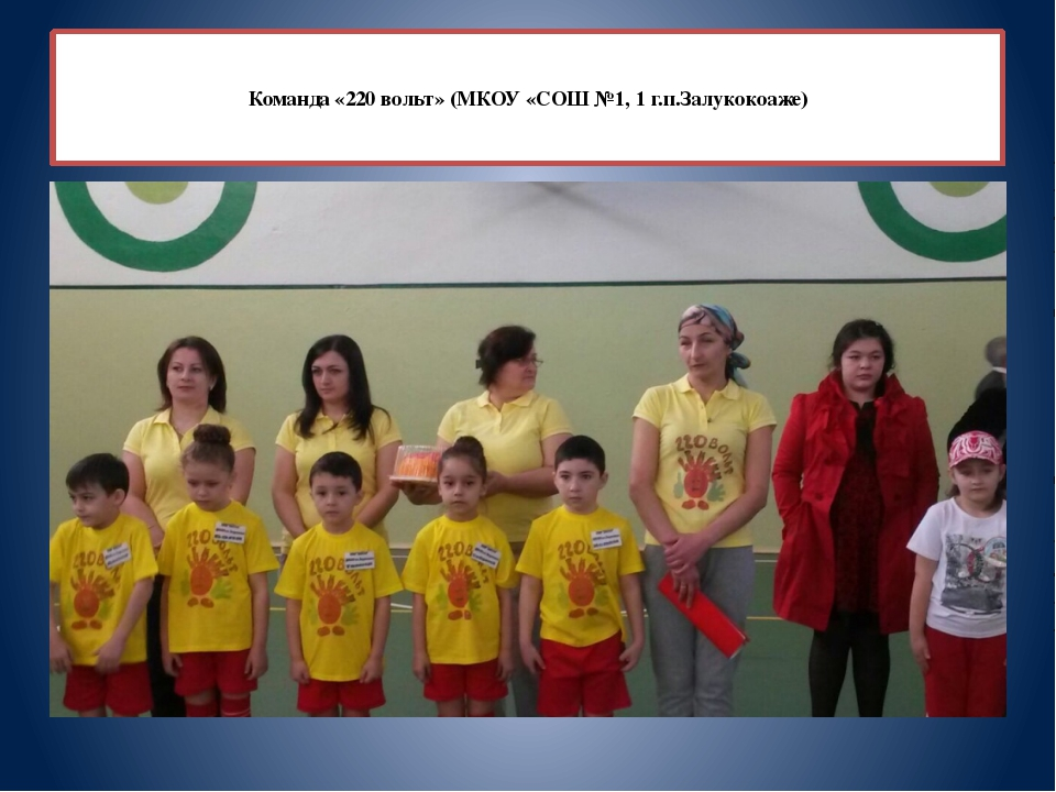 Команда «220 вольт» (МКОУ «СОШ №1, 1 г.п.Залукокоаже)