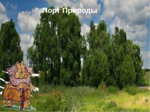 Порт Природы