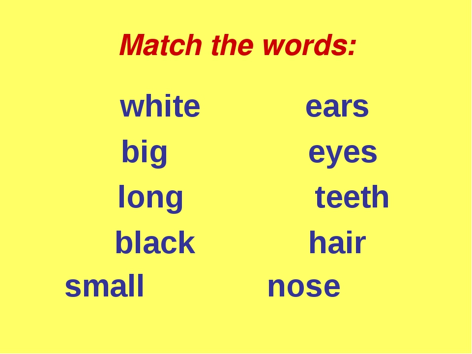 Match the words: white ears big eyes long teeth black hair small nose