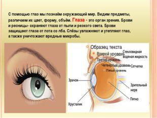 С помощью глаз мы познаём окружающий мир. Видим предметы, различаем их цвет,